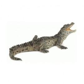 Figura Crocodilo Bebé - PAPO