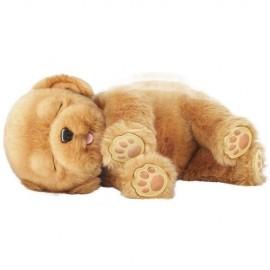 Little Live Pets - Sleepy Puppy
