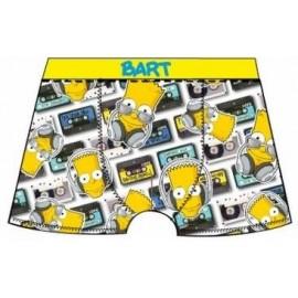 Boxer - Simpsons